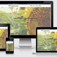 Website for Easy Bee Products, Gloucestershire . http://easybeeproducts.co.uk